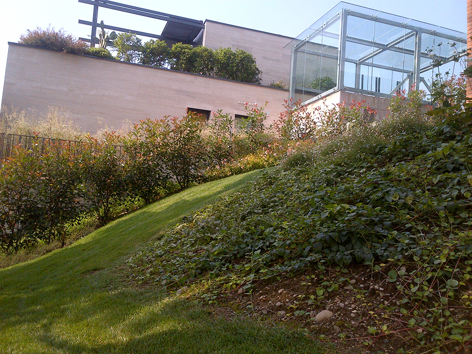 Landscapeinternational-Gallery-Giardini-16
