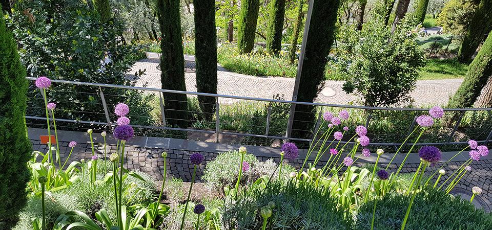 Landscapeinternational-Gallery-Giardini-7